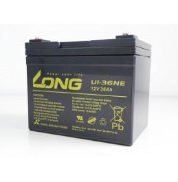 Pliiaku Long U1-36NE